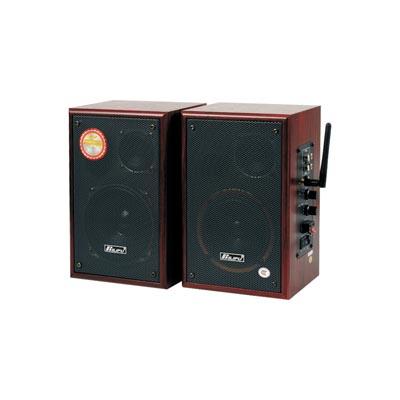 KT-8900    2.4G數字無線有源音箱